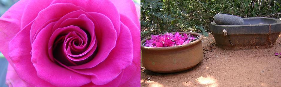Certaines épices sont pilées pour élaborer des remèdes comme le triphala